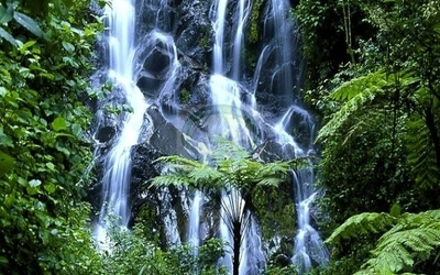 Waterfall in Nyungwe Forest